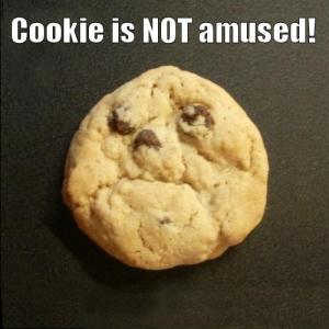 cookie-524dbf7239c1c5870f478e64375e90c6