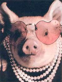pig_in_pearls761687